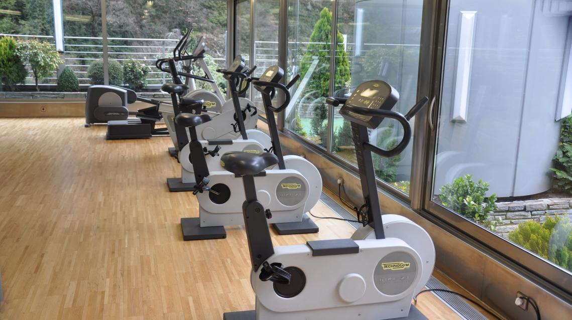 Gimnasio Wellness Spa & Fitness Club Prestigi Hotels Andorra